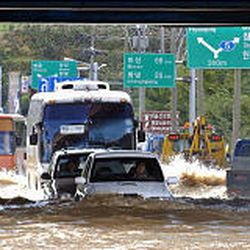 Vehicles make their way along a flooded road in Daegu, south of Seoul, after Typhoon Maemi. Thousands of people sought shelter.