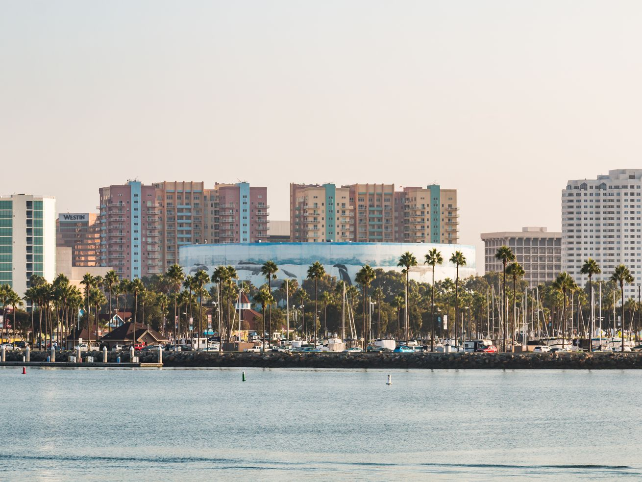 A Long Beach stadium could be constructed close to the city's waterfront.