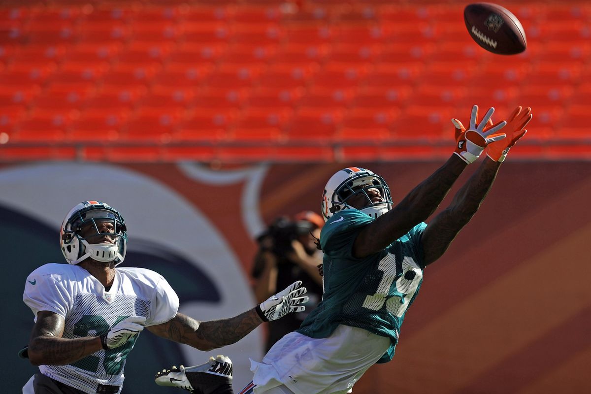 Looks like #19 will be a starting wide receiver for the Dolphins again, this time with Legedu Naanee wearing it.