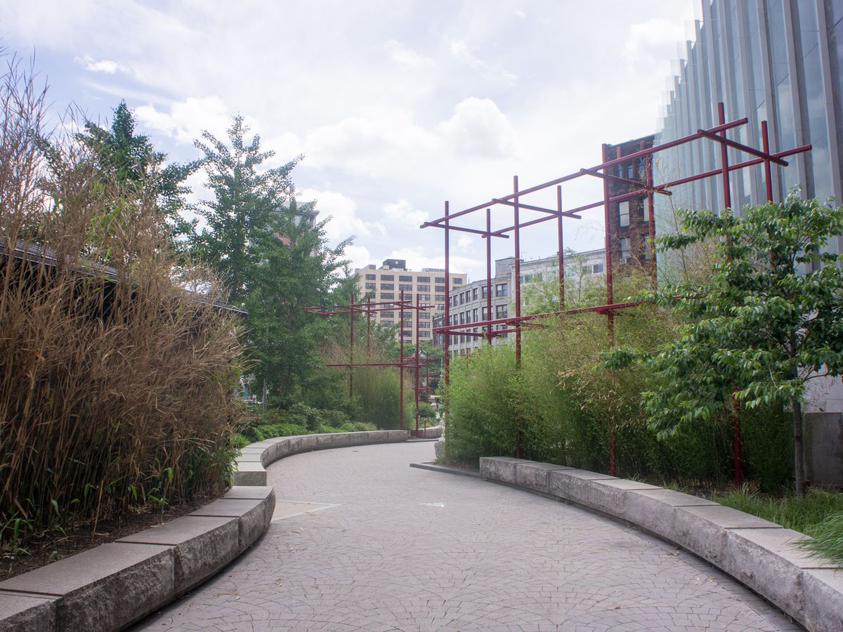 A pedestrian path through a park, and the path is lined with trees.