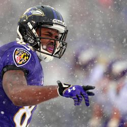 Baltimore Ravens wide receiver Torrey Smith (82) during the game against the Minnesota Vikings at M&T Bank Stadium