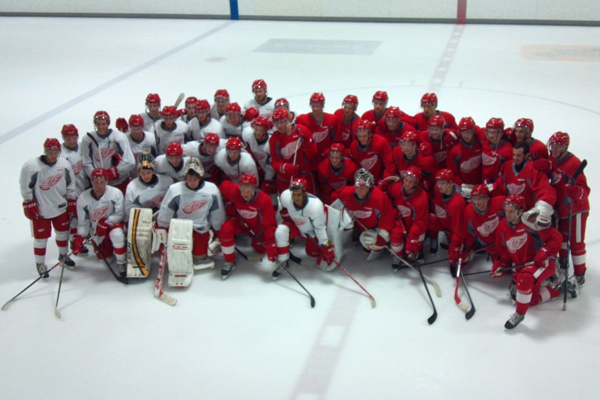 Your 2014 Red Wings Development Camp Players