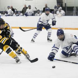 Toronto Furies defender Sydney Kidd tries to sop a shot by Boston Blades forward Kate Leary.