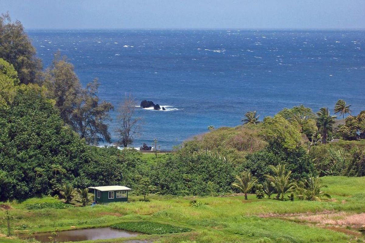 A farm in Maui