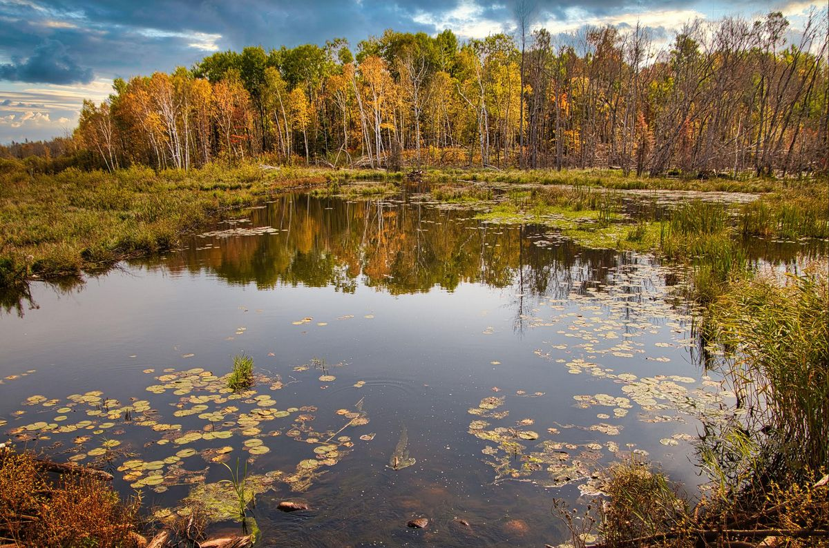 Drought Eases Slightly – Peak Fall Color – Warming Trend Into Monday
