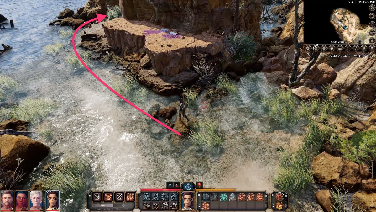 Baldur's Gate 3 Secluded Cove walkthrough
