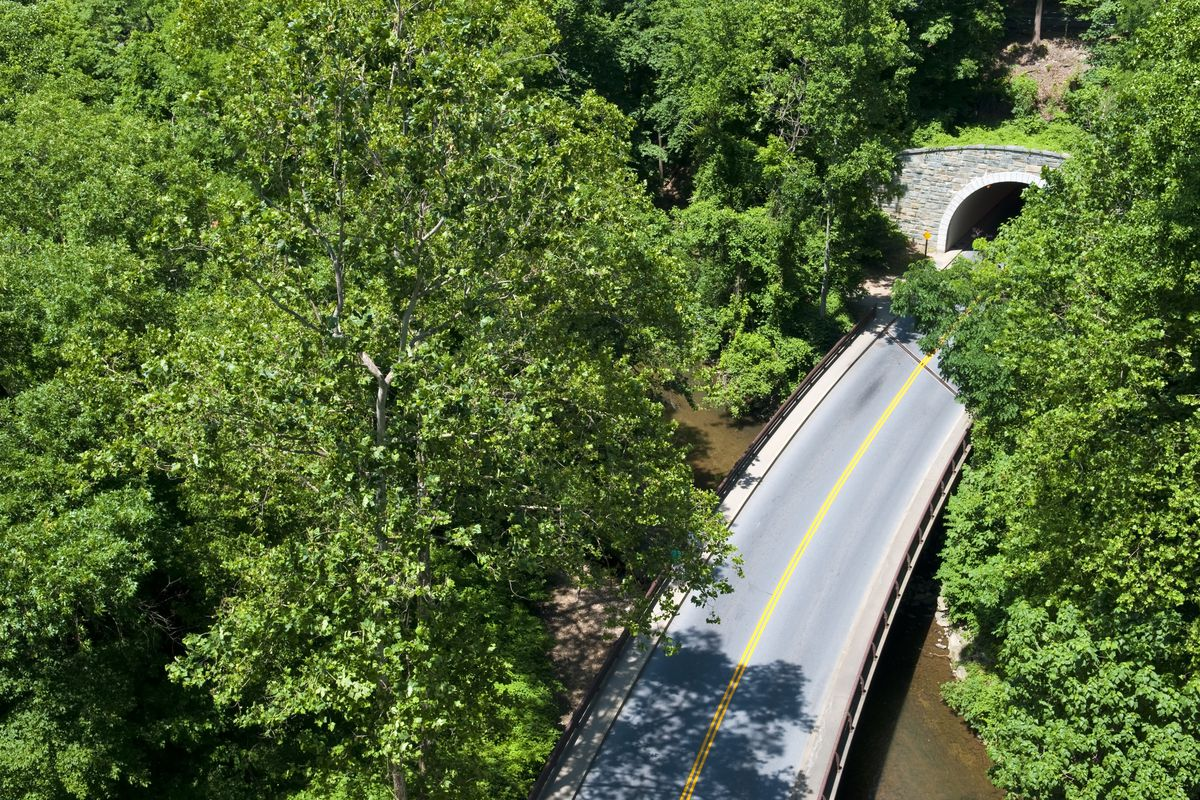 Rock Creek Parkway, a two-lane road that cuts through an underpass, surrounded by trees in Rock Creek Park, viewed from above.