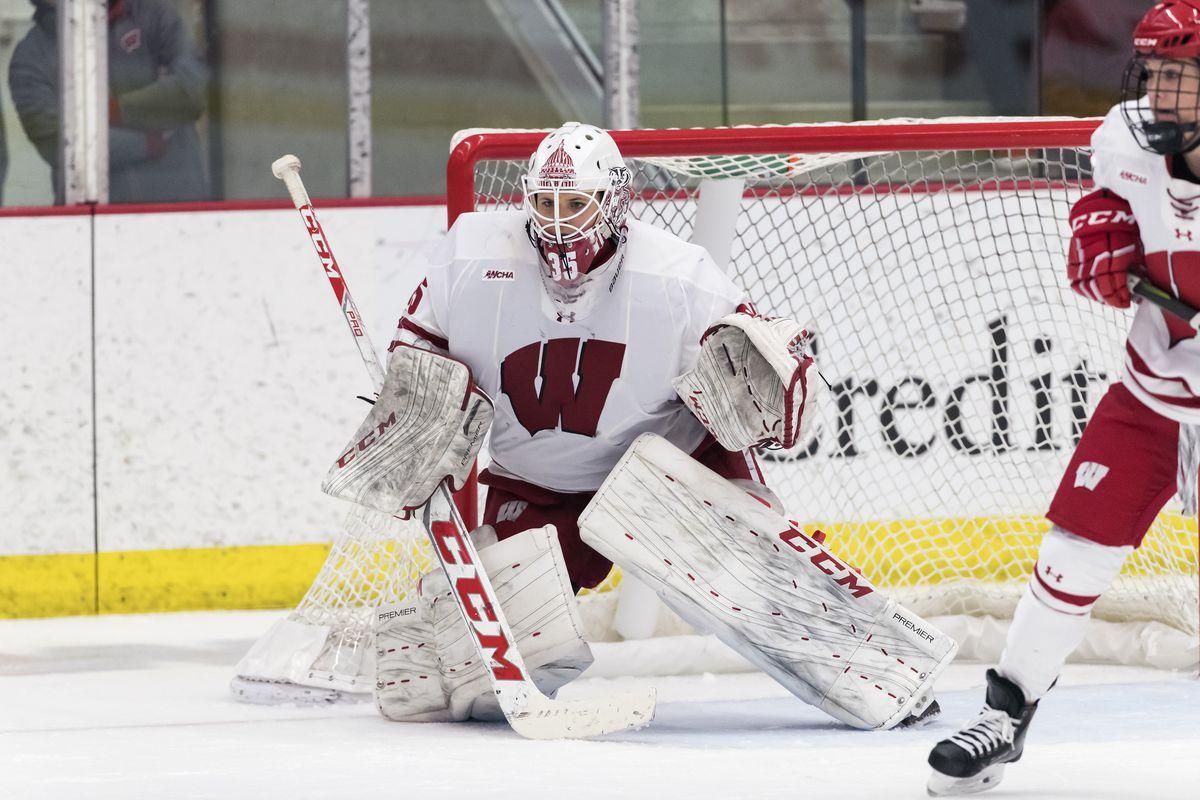 Wisconsin Womens Hockey Badgers Sweep Harvard Buckys 5th Quarter