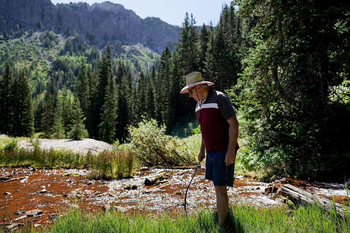 Salt Lake County Council member Richard Snelgrove examines water flowing out of an abandoned mine shaft in Mill D South Fork of Big Cottonwood Canyon on Wednesday, Aug. 12, 2020.