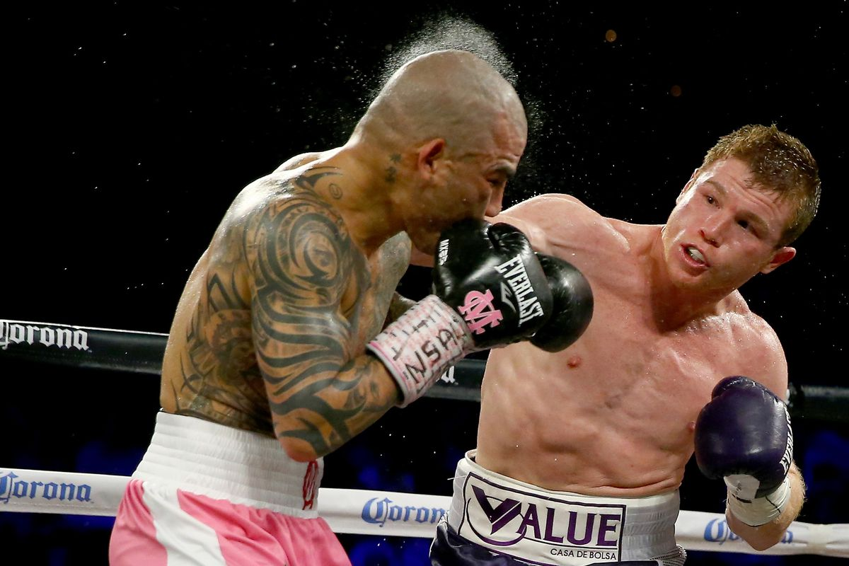 Image result for canelo vs cotto