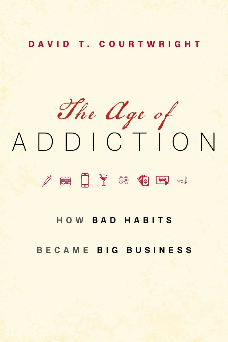 Book cover for The Age of Addiction