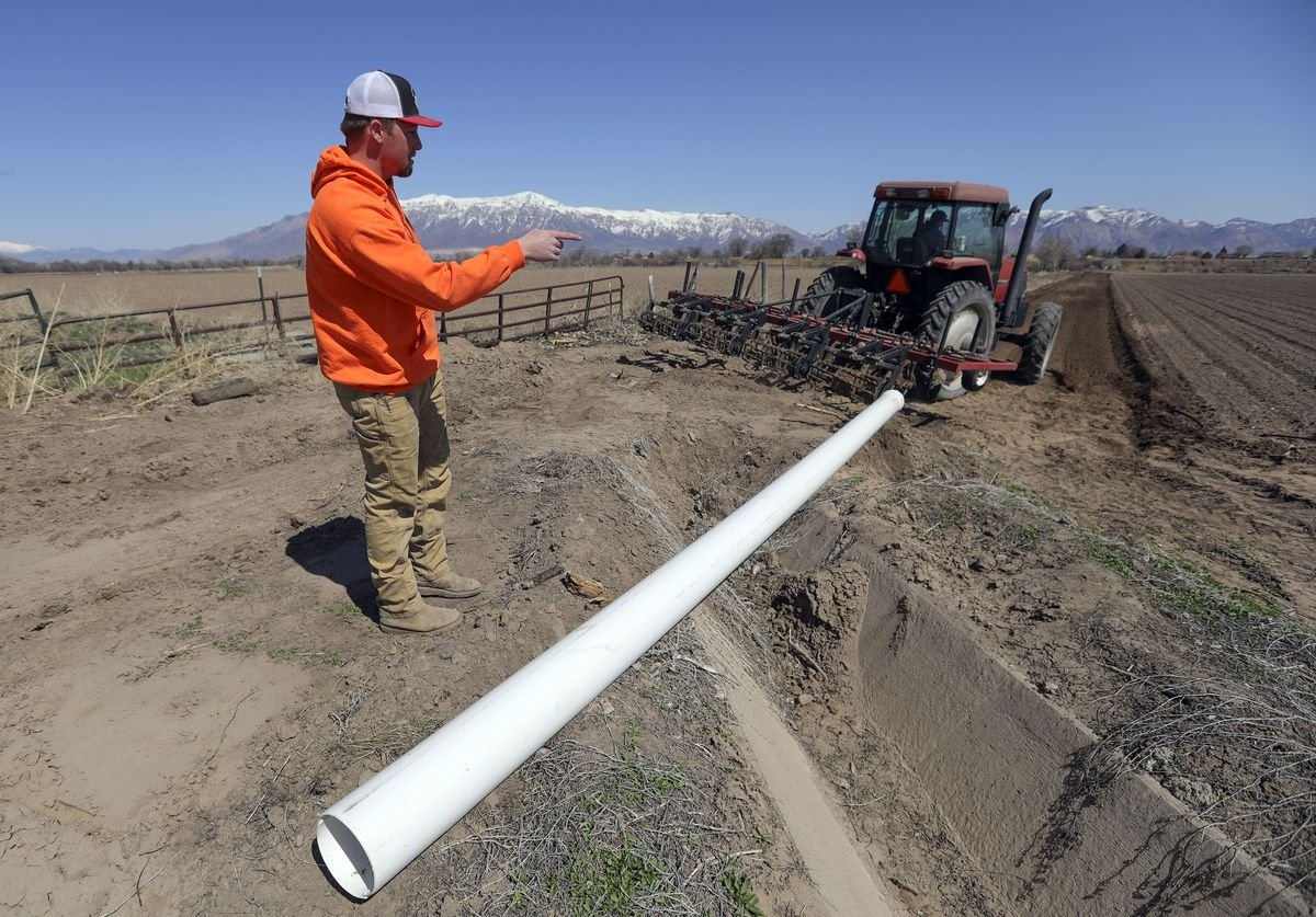 Bennett Gibson, farm manager for Gibson's Green Acres and Bennett Farms, shows where drip irrigation will replace flood irrigation on a field of yellows at the farming operation in West Weber, Weber County, on Wednesday, March 31, 2021.