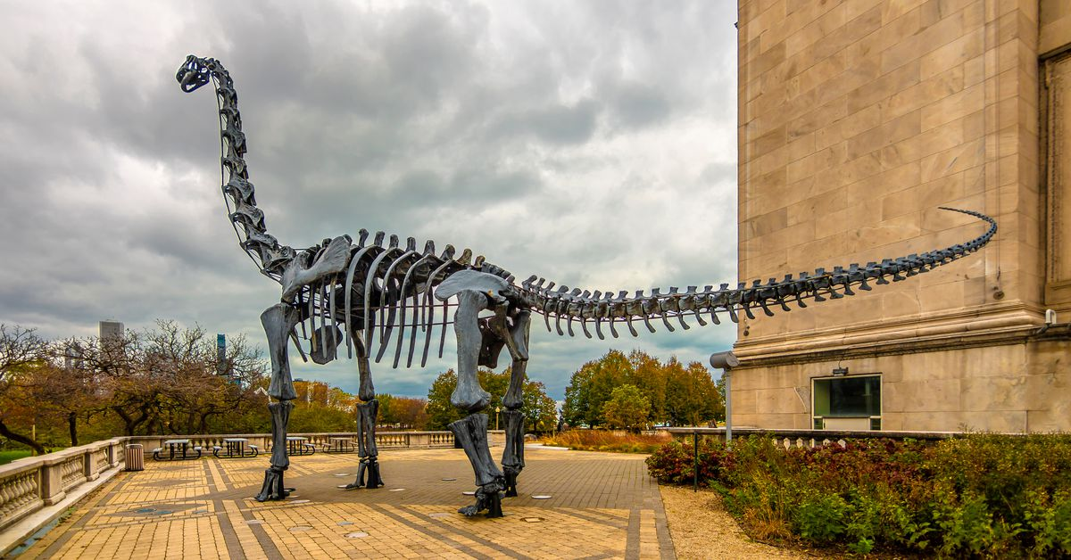 Take virtual tours of these Chicago museums and cultural institutions