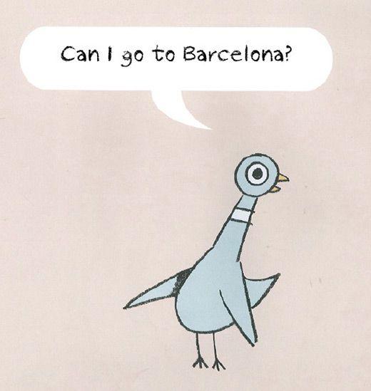 pigeon-11