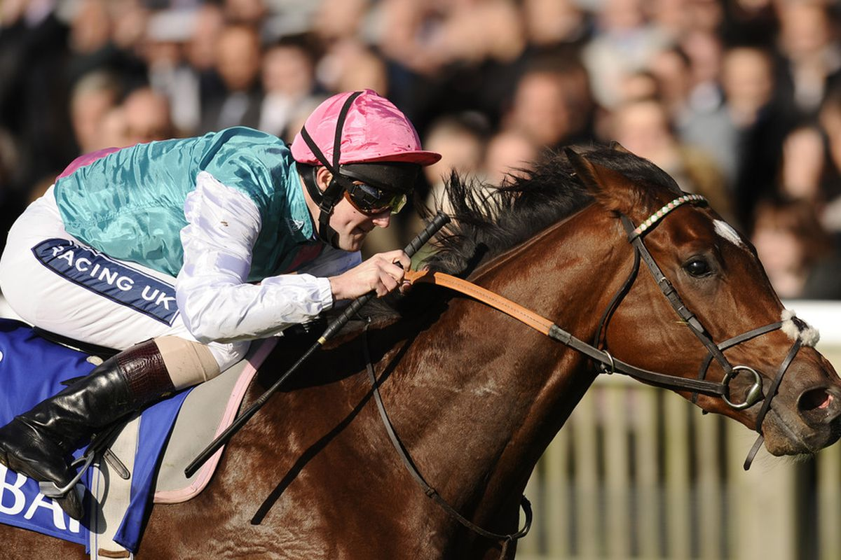 Ante post betting 2000 guineas frankel online betting illegal in united states