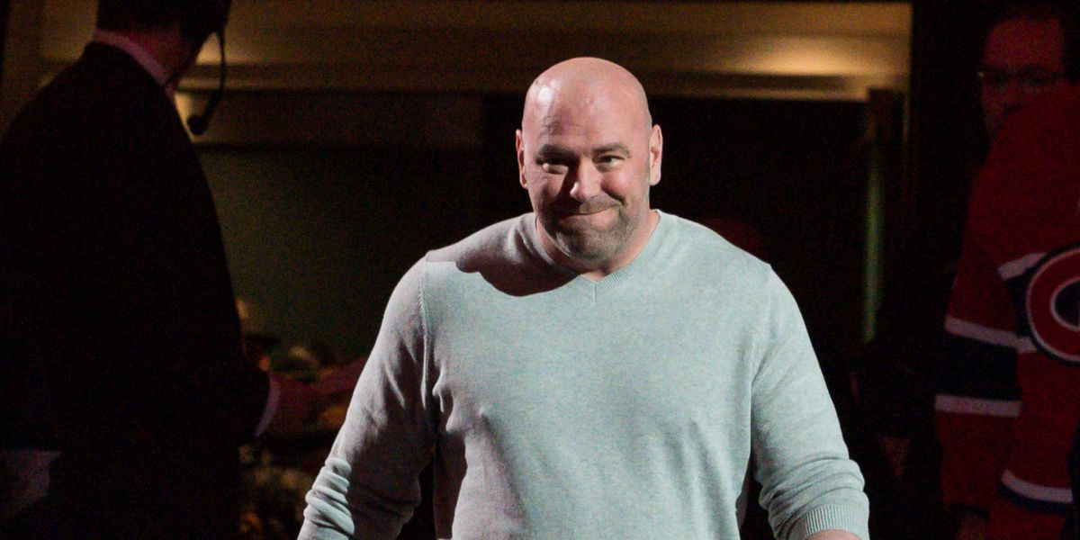 Midnight Mania Internet Roasts Dana White S Inclusion In Ea S Ufc 3 Game Mmamania Com