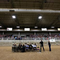 Salt Lake County Mayor Ben McAdams, second from right, answers questions during a town hall meeting at the Salt Lake County Equestrian Park in South Jordan, Monday, April 25, 2016.