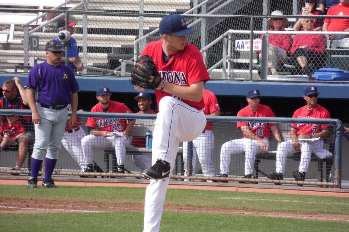 Cody Hamlin made his case as the best pitcher on the staff Saturday for Arizona