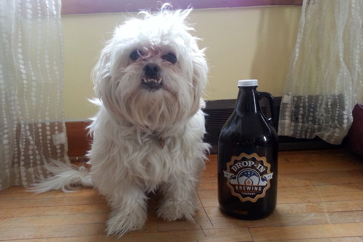 Baxter has another growler this week.