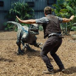 """Chris Pratt attempts to control three velociraptors in \""""Jurassic World,\"""" the year\'s biggest box-office hit, now on Blu-ray and DVD."""