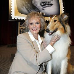"""Actress June Lockhart, who played Timmy's mother, Ruth Marin, on the television series, """"Lassie,"""" poses with Lassie Jr., a ninth generation direct descendant of the original Lassie, at the Television Academy & United State Postal Service dedication ceremony for the """"Early TV Memories"""" commemorative stamps at the Television Academy in Los Angeles, Tuesday."""