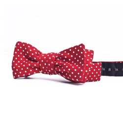 """<b>Everlane</b> Bow Tie in red polka, <a href=""""https://www.everlane.com/collections/holiday-ties-and-bows/products/red-polka-bow"""">$35</a> at The Everlane Workshop"""