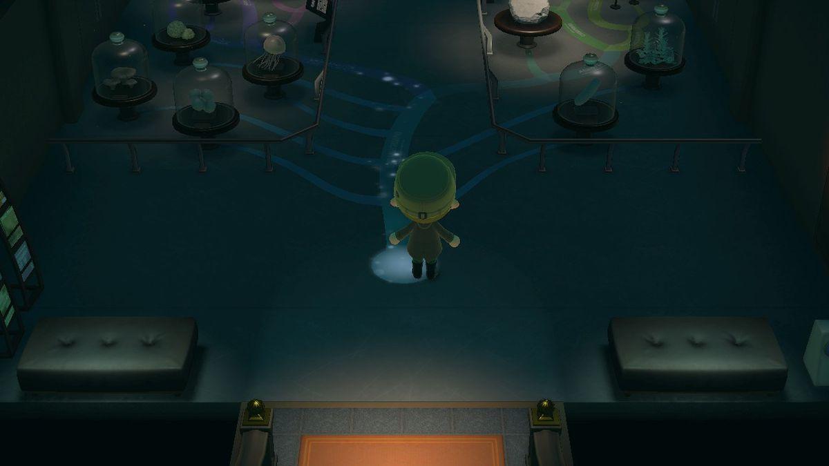 Image: Nintendo EPD/Nintendo via Polygon