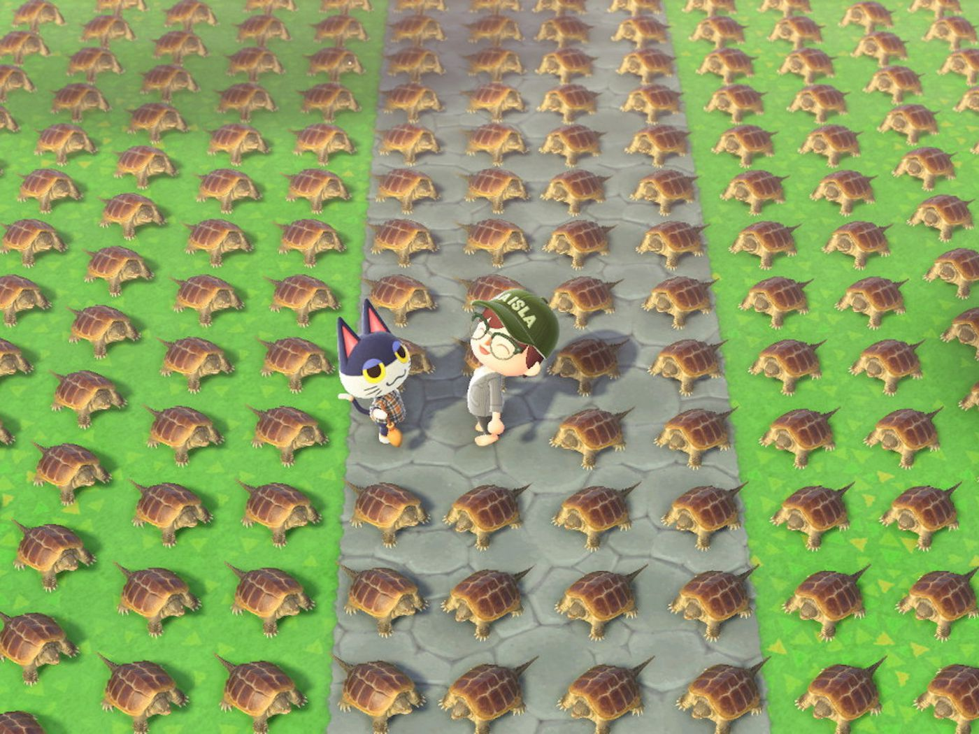 Animal Crossing New Horizons Fan Tortures Villagers With Turtles Polygon