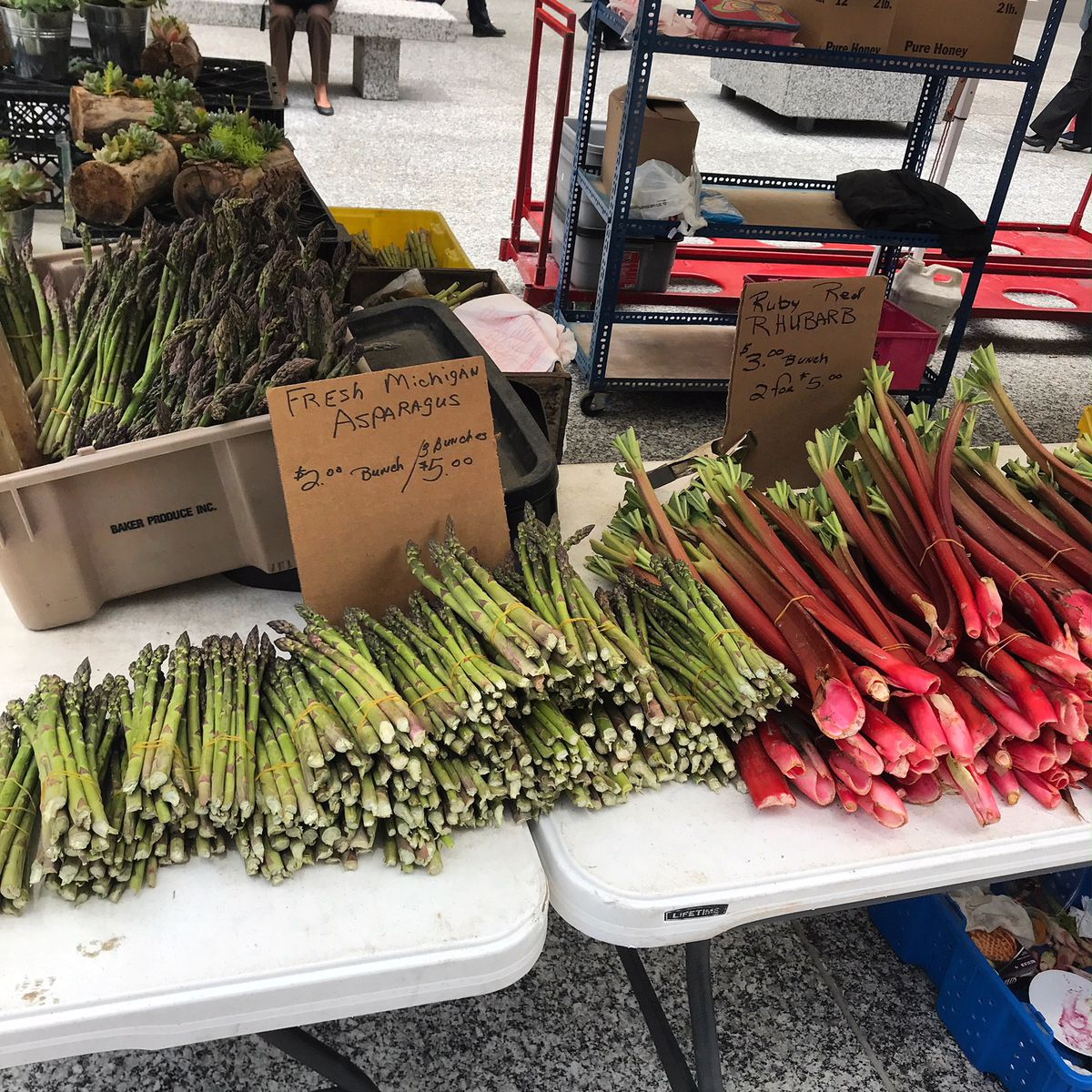 Asparagus & rhubarb are plentiful at the start of the Farmers Market season.   Provided to the Sun-Times