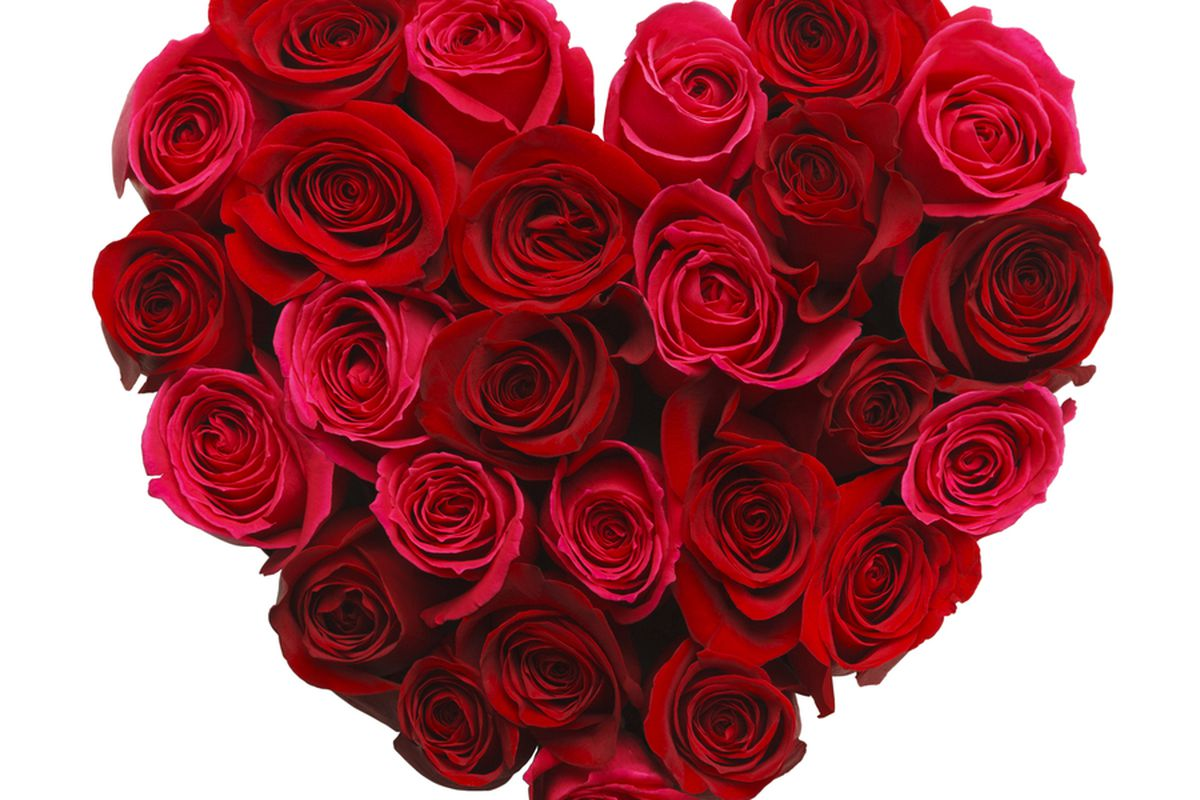 Amazon\'s New Flower Shop Disappears Just in Time for Valentine\'s Day ...