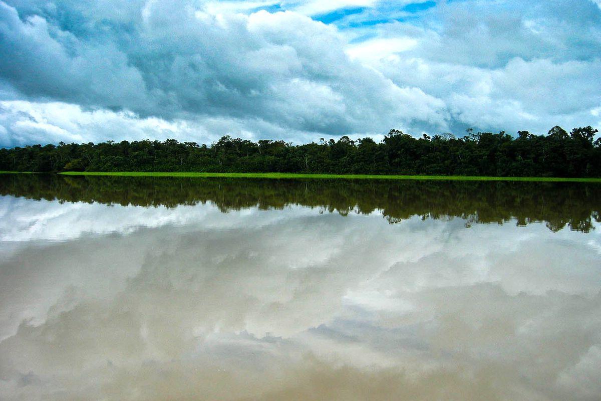 amazon river (flickr shaun hurley)