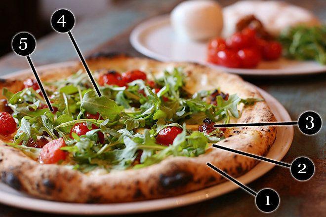 Cane rosso delia pizza