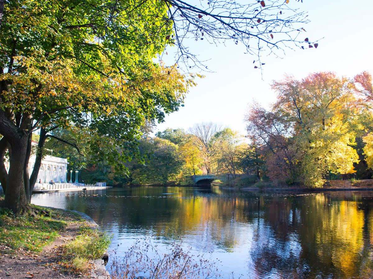 Prospect Park: secrets of Brooklyn's beloved park - Curbed NY