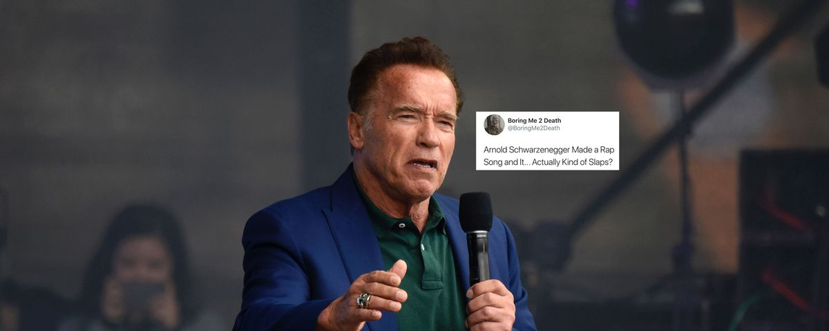 Arnold Schwarzenegger S Rap Song Is Too Pure For This World