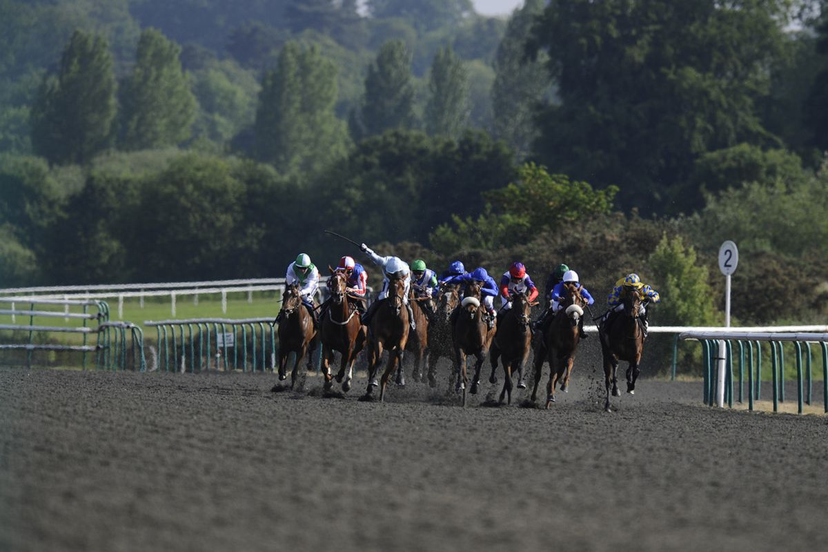 LINGFIELD, ENGLAND - JUNE 02: Jim Crowley riding Queen Of Cash (3rd L, light blue) win The Edenbrook Fillies' Handicap Stakes at Lingfield racecourse on June 02, 2011 in Lingfield, England. (Photo by Alan Crowhurst/ Getty Images)
