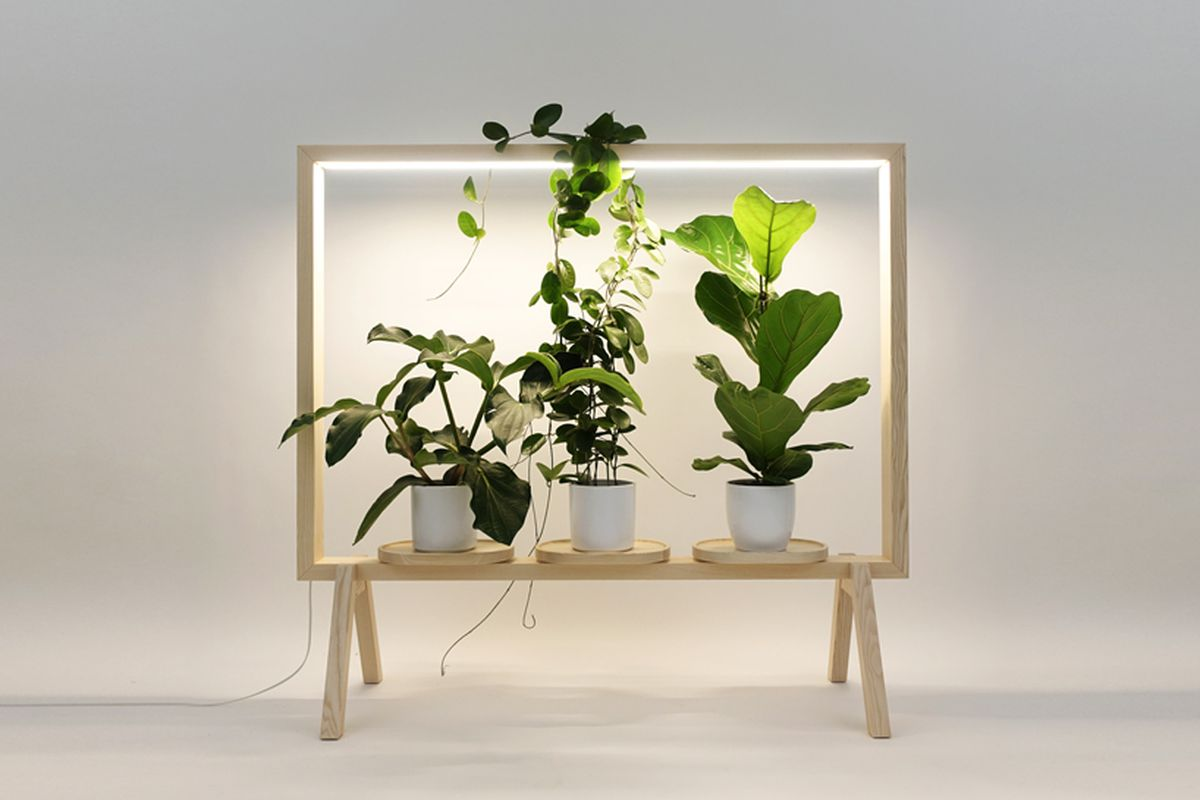 light-up frame for plants