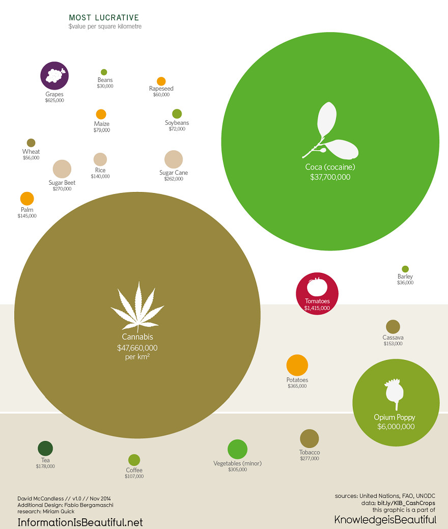 The most lucrative crops are illegal drugs.