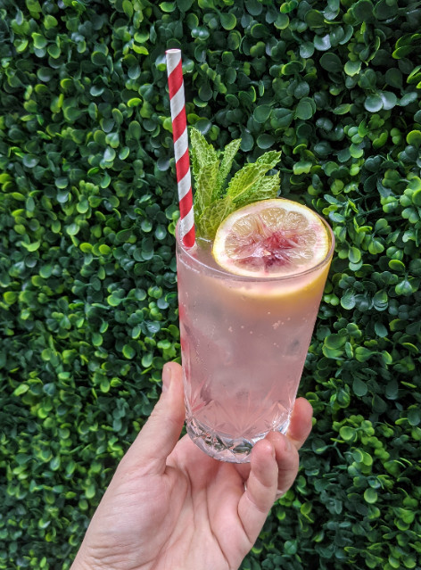 A hand holds a light pink cocktail topped with a lemon slice and mint in front of green shrubbery