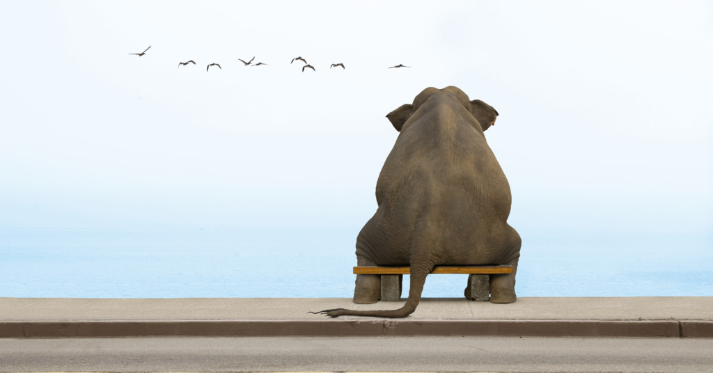 Very_sad_elephant_by_gawrifort_d5tk7rn