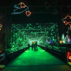 A wonderland of lights greets Hogle Zoo guests during the opening night of ZooLights in Salt Lake City on Friday, Dec. 4, 2020. Thanks to a grant funded by the Utah Legislature through the Utah Division of Arts & Museums, this year's ZooLights is free to the public.
