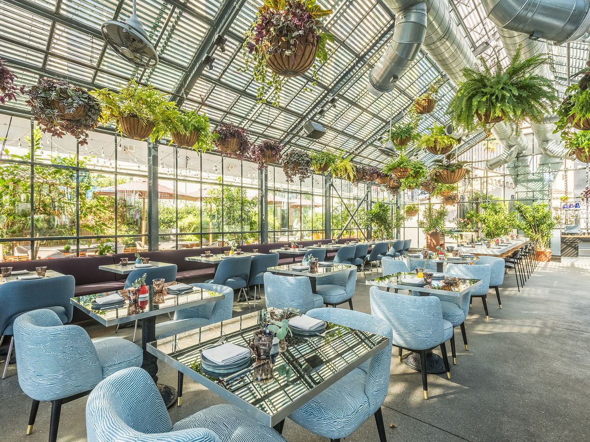 Openaire's greenhouse-like dining area, with lots of plants hanging over light blue chairs and tables.