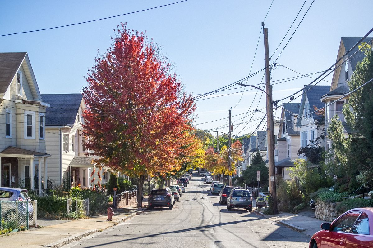 Two rows of houses along a street, with telephone poles and trees too.