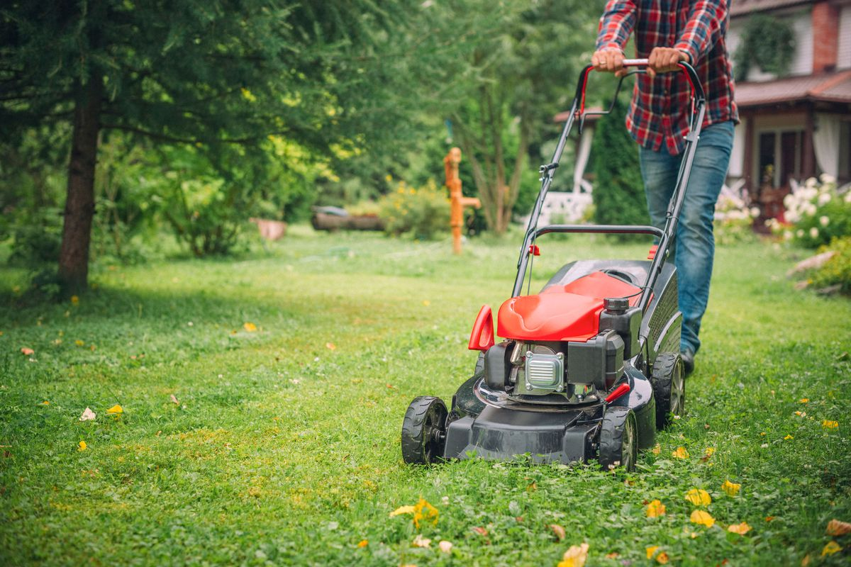 A person in a plaid flannel shirt pushing a lawnmower on a clear fall day.