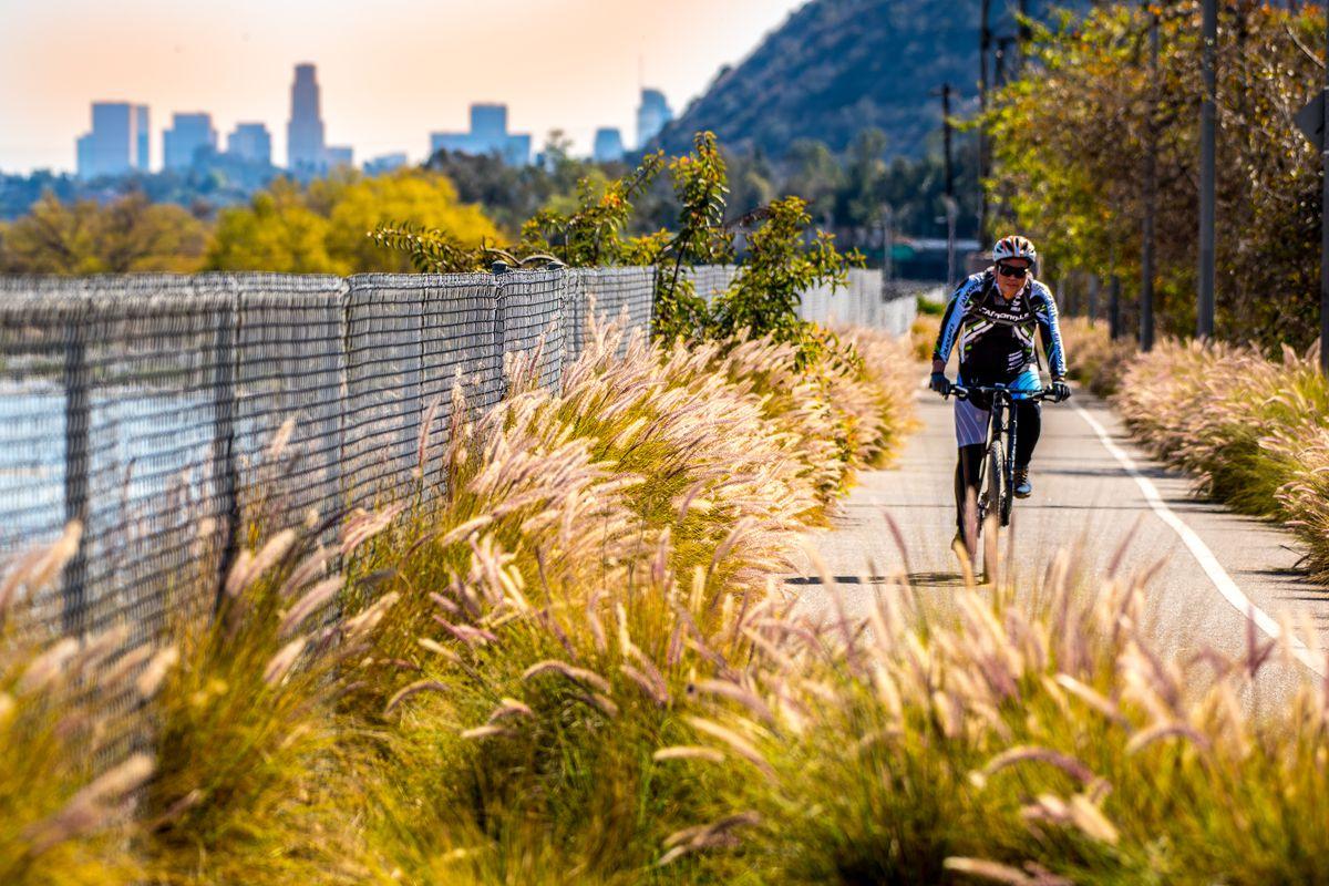 LA River Elysian Valley bike path