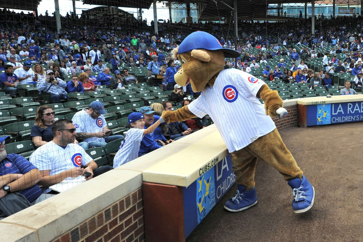 7f32db2a29e Chicago Cubs history  The curious (and creepy) case of the Cubs lost mascots
