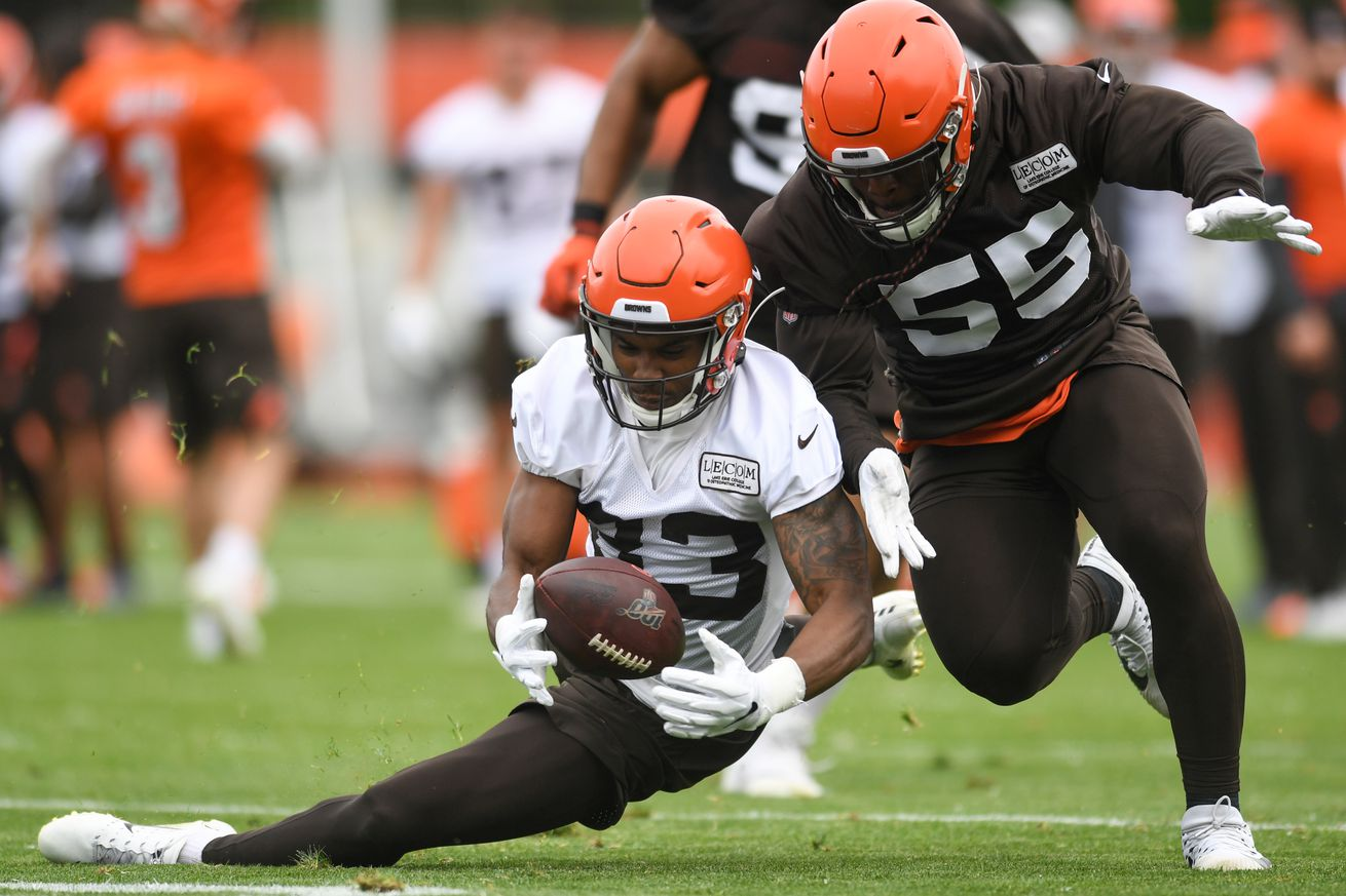 Cleveland Browns Training Camp 2019: WR Preview, Part 3