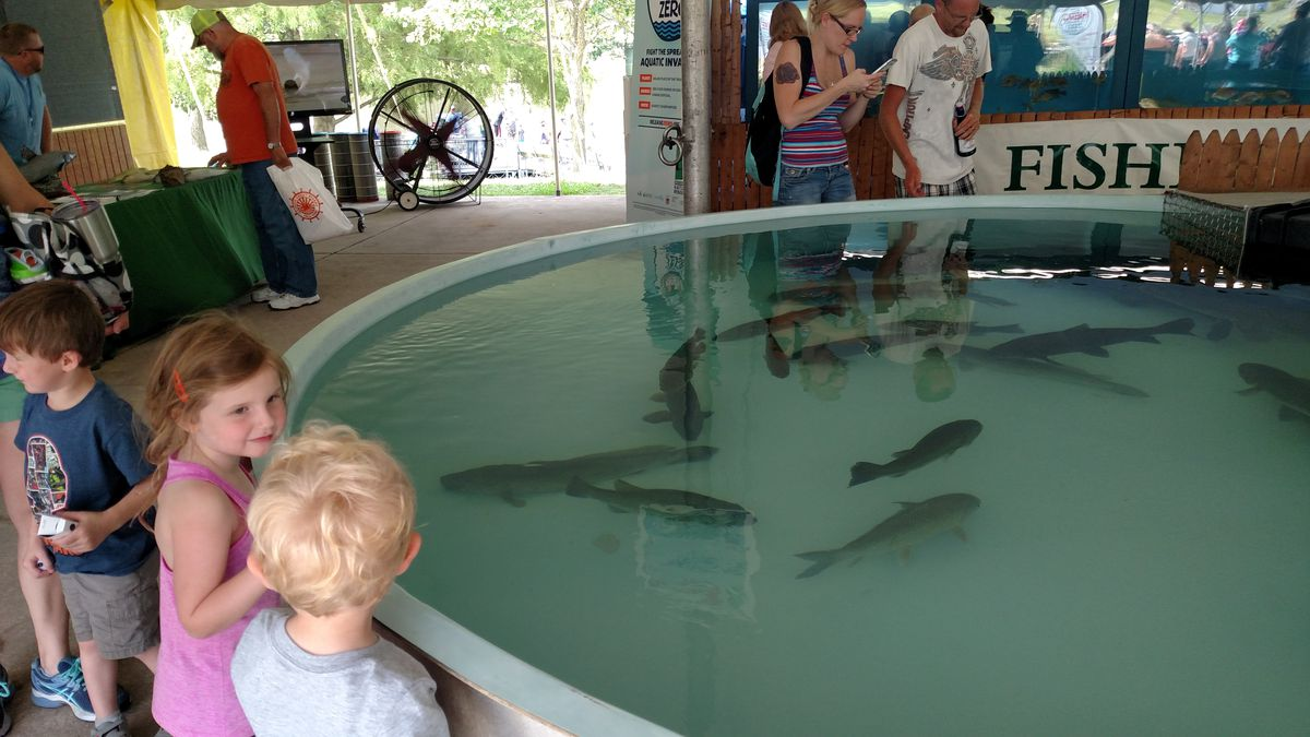 The fish tanks at Conservation World continue to be a draw for all ages.<br>Credit: Dale Bowman