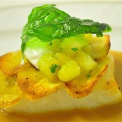 Plantain- Crusted, Pan Seared Sea Bass accompanied by Mango, Papaya & Avocado Salsa and Lobster Veloute