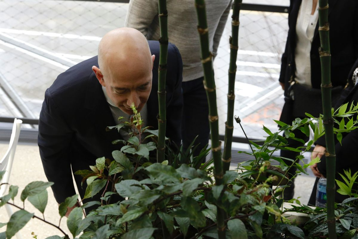 Amazon CEO Jeff Bezos stops to smell the flowers at the grand opening of the Amazon Spheres, in Seattle, Washington on January 29, 2018.
