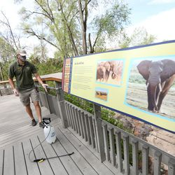 Jerek Lewis wipes down a railing at the Hogle Zoo after spraying it with a disinfectant in Salt Lake City on Saturday, May 2, 2020. The zoo reopened to guests after closing because of the COVID-19 pandemic and has new regulations in place to help avoid the spread of the virus. Lewis said the grounds crew cleans surfaces three times a day at 8 a.m., 11 a.m., and 3 p.m.